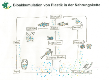 Bioaakkumulation